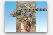 اثر NFT خالد جرار با هدف آگاهی جهانیان از اشغال ۷۳سالهی فلسطین