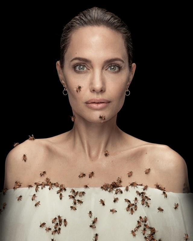 جزئیاتی از پروژه عکاسی انجلینا جولی برای روز جهانی زنبور عسل