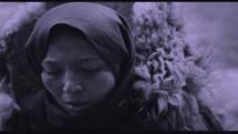 درخشش فیلم سازان ایرانی در بلگراد
