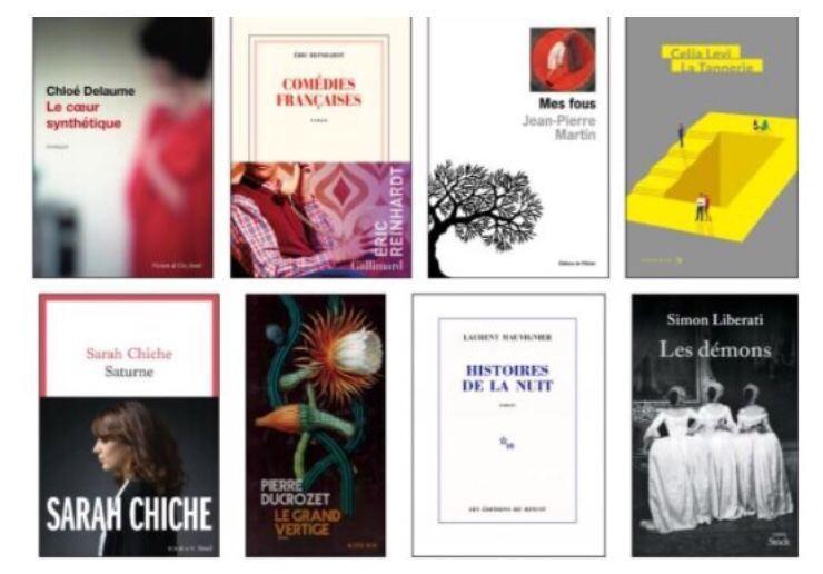 پانزده رمان فرانسوی و ۱۳ رمان ترجمهشده در فهرست نامزدهای اولیه جایزه ادبی مدیسی قرار گرفتند