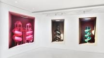آثار مهدی قدیانلو در پاریس