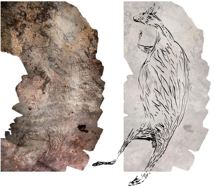 قدیمیترین سنگ نگاره استرالیا تصویری از یک کانگورو